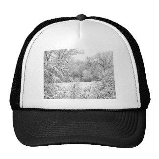 Winter Snow At Huron River Trucker Hat