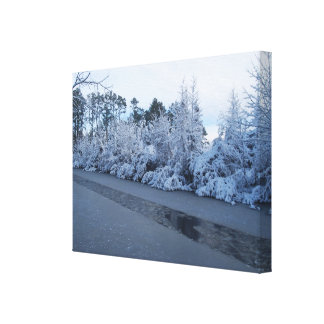 Winter Snow Capped Trees Broken Ice Pathway Stretched Canvas Print