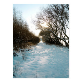 Winter Snow Covered English Countryside Path Postcard