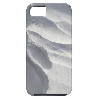 Winter Snow Drift Sculpture iPhone 5 Case