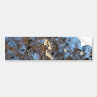 Winter snowberry flower with snowflakes bumper sticker