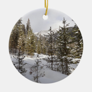 Winter Snowy Mountain Scene in Montana Christmas Ornament
