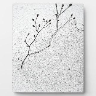 Winter Softness Plaque