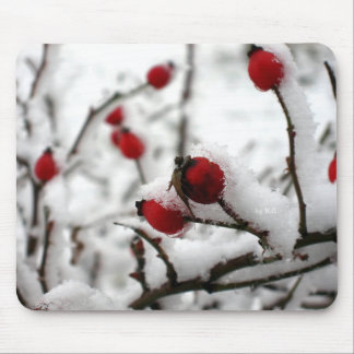 Winter Spirit Mouse Pad