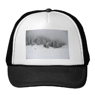 Winter sports, Winter in Romania Cap