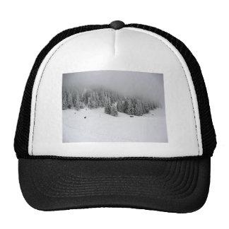 Winter sports, Winter in Romania Trucker Hat