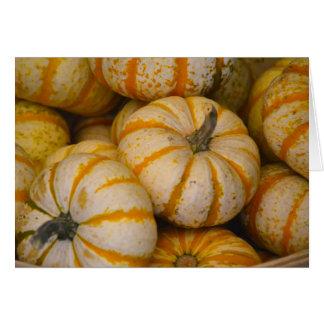 Winter Squash Pumpkin Notecard