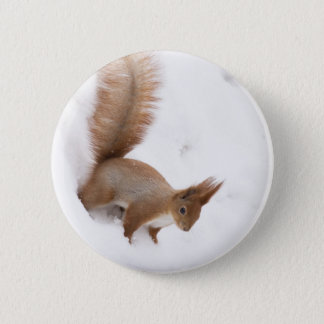 Winter Squirrel 6 Cm Round Badge