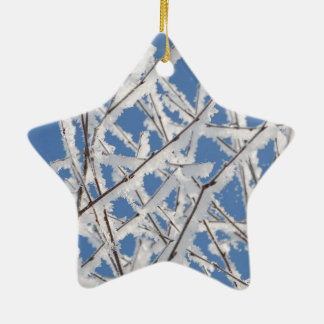 Winter - Star Ornament. Christmas Ornament