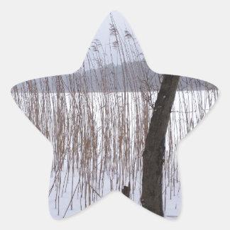 Winter Star Sticker