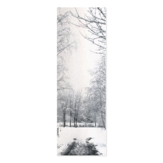 Winter starts here gift tag pack of skinny business cards