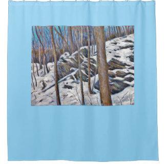 Winter Stones Shower Curtain