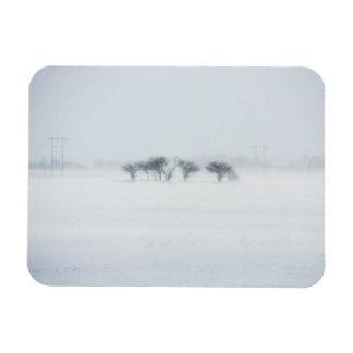 Winter storm landscape rectangle magnets