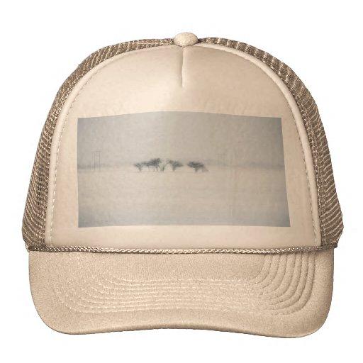 Winter storm landscape hat