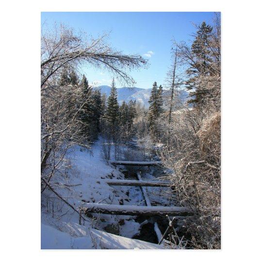 Winter Stream Postcard