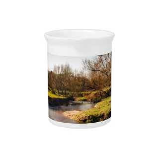 Winter Stroll Along The River Bollin Beverage Pitcher