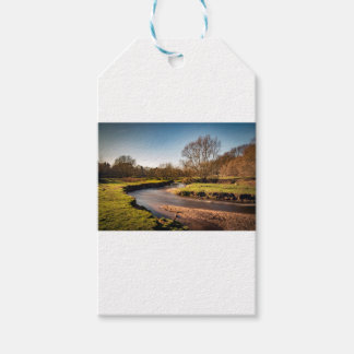 Winter Stroll Along The River Bollin Gift Tags