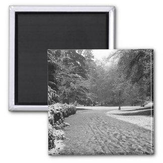 Winter Stroll Magnet
