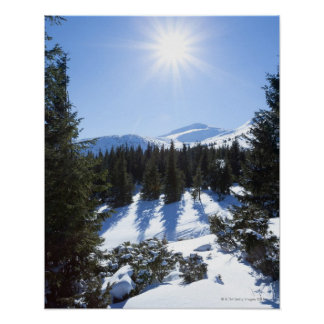 Winter sun 5 poster