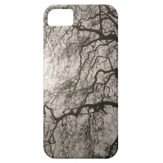 Winter Sun Case For The iPhone 5