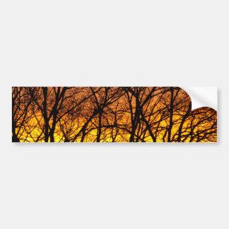 Winter Sunrise Bumper Sticker
