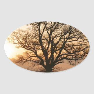 Winter Sunrise Oval Sticker