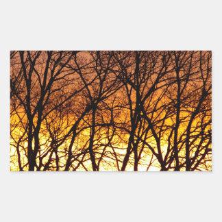 Winter Sunrise Sticker