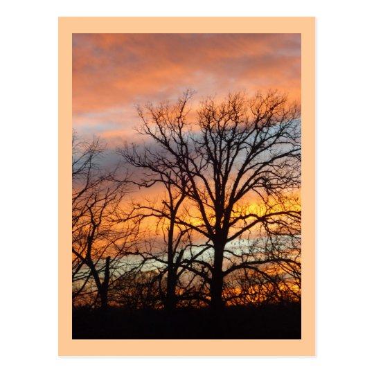 Winter Sunset 1 custom postcard