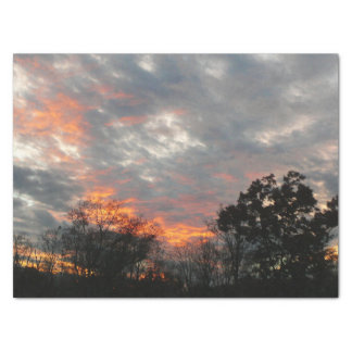 Winter Sunset Nature Landscape Photography Tissue Paper