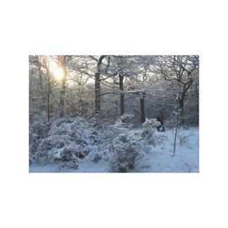 Winter Sunset Woodland Snow Canvas Art