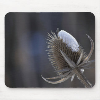 Winter Thistle Mousepad