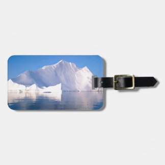 Winter Through The Icebergs Luggage Tag