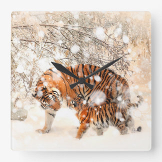 Winter tigers square wall clock