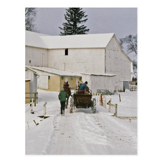 Winter Time Amish Farm-Postcard Postcard