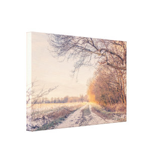 Winter trail in a countryside landscape canvas print