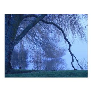 Winter tree and lake post card