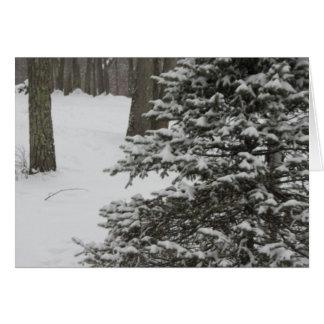 Winter Tree Holiday Card