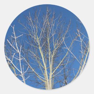 Winter tree round stickers