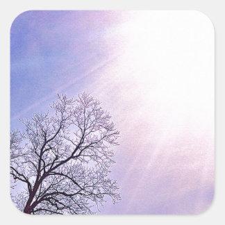 Winter Trees & A Cold Sun Seasonal Nature Art Square Sticker