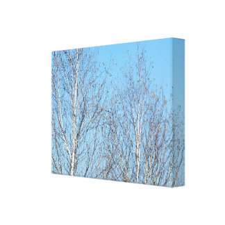 Winter Trees Against Blue Sky Gallery Wrapped Canvas