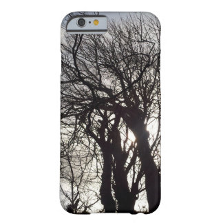 Winter Trees along a Country Lane Cornwall England Barely There iPhone 6 Case