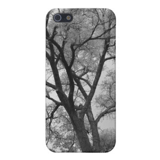 Winter Trees Black & White landscape Photography iPhone 5 Case