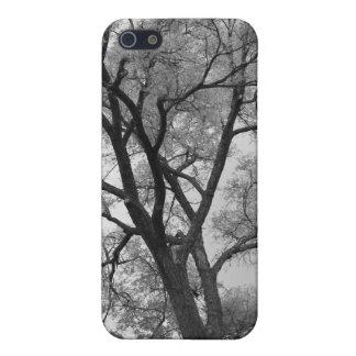 Winter Trees Black & White landscape Photography iPhone 5 Case