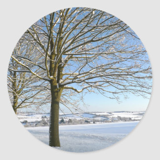 Winter Trees Classic Round Sticker