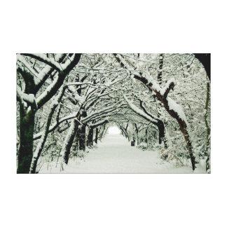 Winter Trees in Heaton Park Canvas Print
