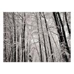 Winter trees personalised invitation