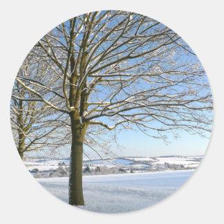Winter Trees Round Sticker