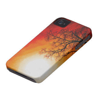 Winter Trees & Setting Sun Branches Nature Scene iPhone 4 Covers