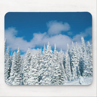 Winter trees, Steamboat, Colorado, USA Mouse Mat