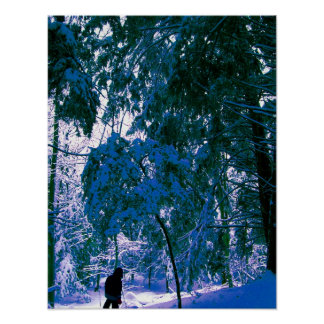 Winter Walk in the Woods Photography Poster